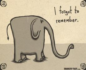 forgot-remember